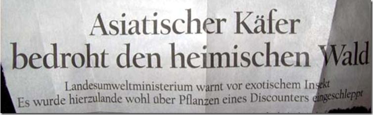 Zeitungsmeldung Berliner Zeitung 29.06.2008
