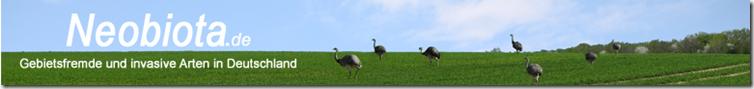 Seite des Bundesamts für Naturschutz zu Invasivitätsbewertungen gebietsfremder Arten für Deutschland